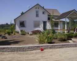 Yard Renovation